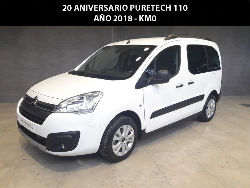 Citroen Berlingo Multispace FEEL PureTech 110cv S&S Feel