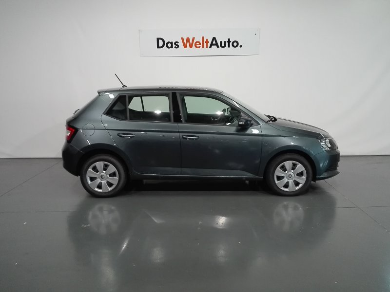 Skoda Fabia 1.4 TDi 55KW (75cv) Business