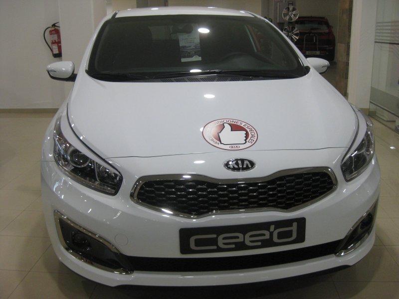Kia ceed 1.6 CRDi VGT 100kW (136CV) Drive