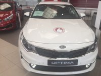 Kia Optima 1.7 CRDi VGT 141CV Eco-Dynamics Business